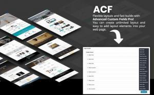 Acf plugin